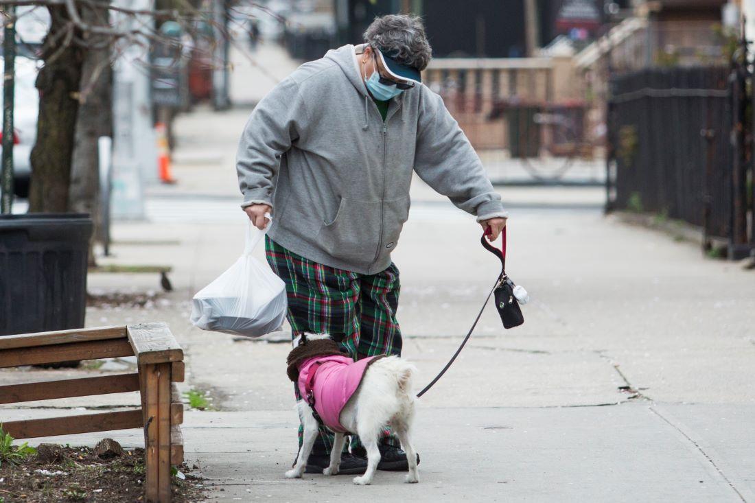¿Qué hacer en caso de mordedura de perro?