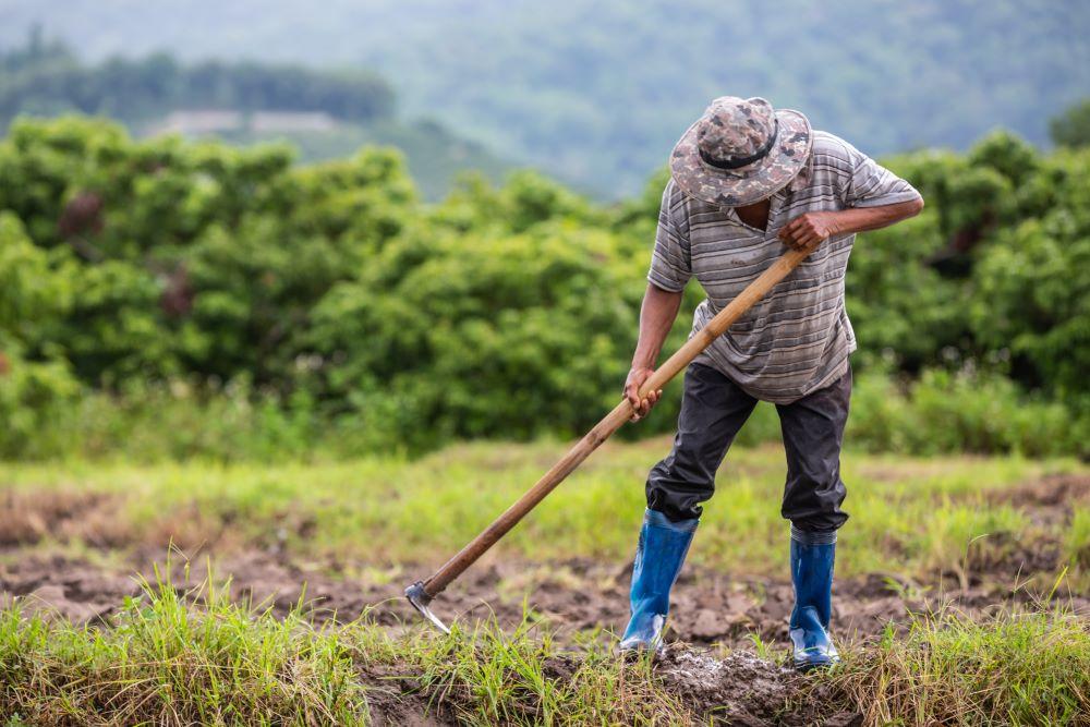 Conozca cuáles son los derechos y beneficios para trabajadores temporales